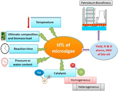A review on the hydrothermal processing of microalgal biomass to bio