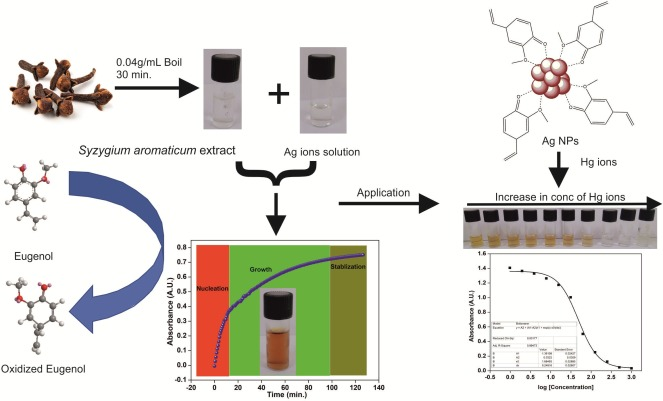 Biosynthesis of silver nanocrystals, their kinetic profile
