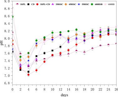 Anaerobic digestion disposal of sewage sludge pyrolysis liquid in