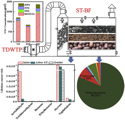Removal of volatile organic compounds (VOCs) emitted from a textile dyeing  wastewater treatment plant and the attenuation of respiratory health risks  using a pilot-scale biofilter - ScienceDirect