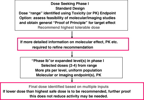 Endpoints and other considerations in phase I studies of