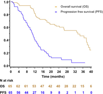 Folfirinox As Induction Treatment In Rectal Cancer Patients With Synchronous Metastases Results Of The Ffcd 1102 Phase Ii Trial Sciencedirect