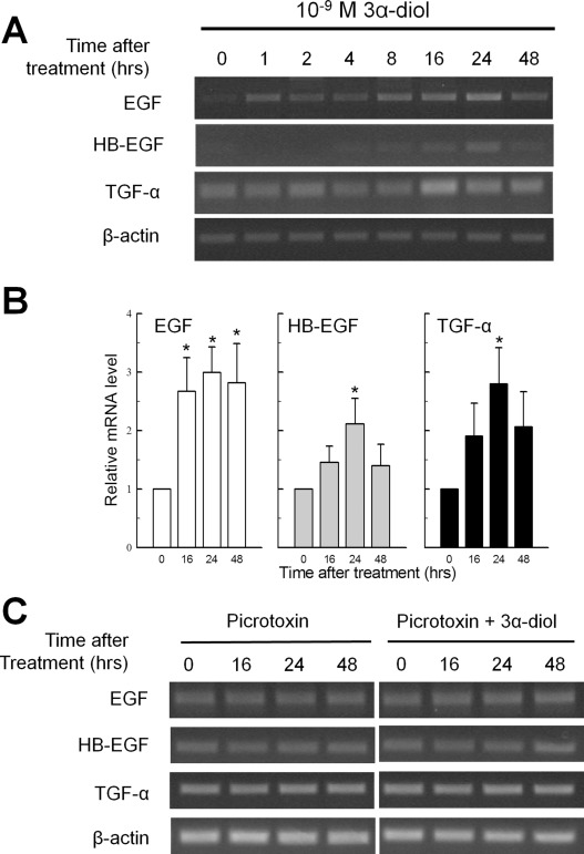 Transition from androgenic to neurosteroidal action of 5α