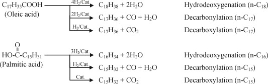 Hydrodeoxygenation of oleic acid and palmitic acid to