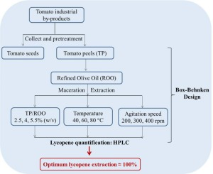 Optimization of lycopene extraction from tomato peels