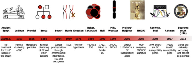 cancer genetic discovery