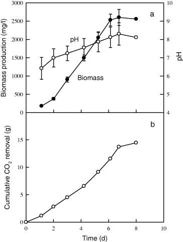 Biosorption Of Cadmium By Co2 Fixing Microalga Scenedesmus Obliquus