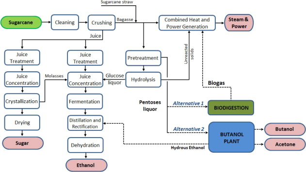 Utilization of pentoses from sugarcane biomass: Techno