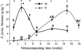 Vermicomposting Process Diagram