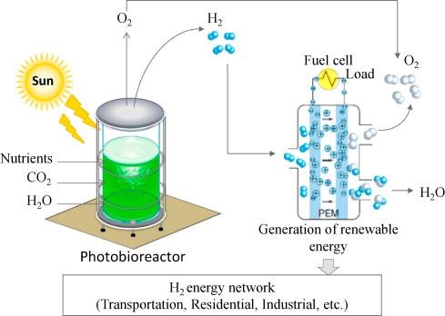 Image result for Hydrogen Generation