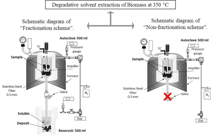 Degradative Solvent Extraction Of Biomass Using Petroleum Based