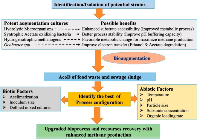 Co-digestion of food waste and sewage sludge for methane
