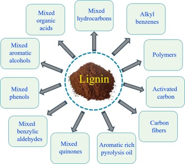 From lignin to valuable products–strategies, challenges, and prospects -  ScienceDirect