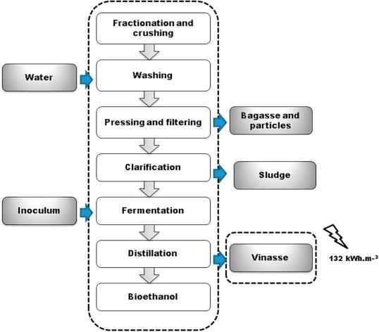 Arthrospira Maxima Of15 Biomass Cultivation At Laboratory And