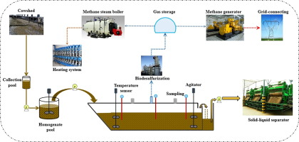 Efficient biogas production from cattle manure in a plug