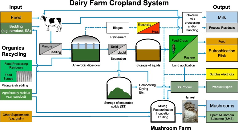 Integrating anaerobic co-digestion of dairy manure and food