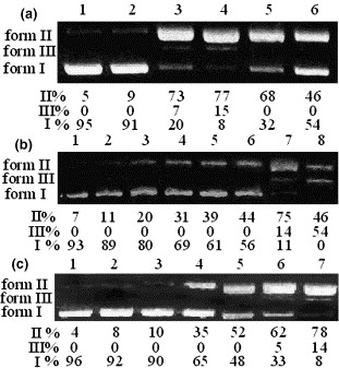 Synthesis, antitumor evaluation and DNA photocleaving activity of ...