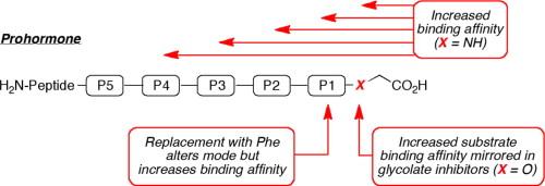 Peptidylglycine alpha-amidating monooxygenase inhibitor