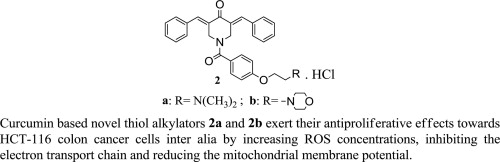 Mitochondrial Dysfunction Contributes To The Cytotoxicity Of Some 3 5 Bis Benzylidene 4 Piperidone Derivatives In Colon Hct 116 Cells Sciencedirect