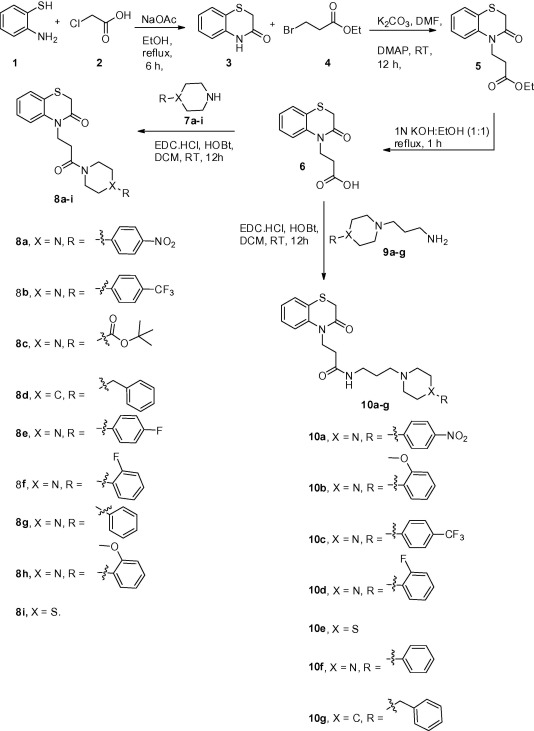Novel benzothiazine-piperazine derivatives by peptide-coupling as