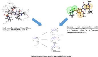 设计和吡唑并[3,4-d]嘧啶酮衍生物的合成:选择性磷酸二酯酶5抑制剂的发现