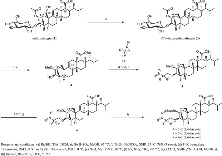 MK-5204: An orally active β-1,3-glucan synthesis inhibitor ...