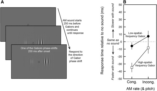 Interactive Coding of Visual Spatial Frequency and Auditory