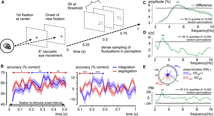 Eye Movements Reveal Temporal >> Temporal Integration Windows In Neural Processing And Perception