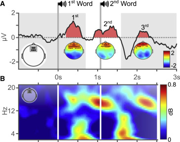 Implicit Vocabulary Learning during Sleep Is Bound to Slow