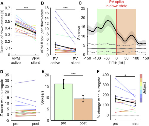 Thalamic Drive of Cortical Parvalbumin-Positive Interneurons