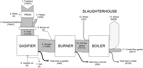 Bioenergy From Feathers Gasification Efficiency And Performance