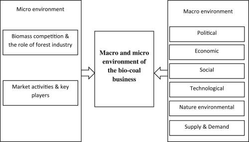 Bio-coal market study: Macro and micro-environment of the
