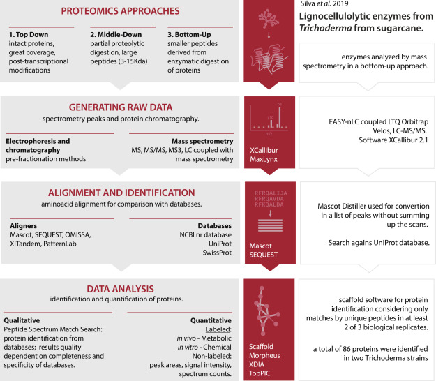 Bioinformatics applied to biotechnology: A review towards