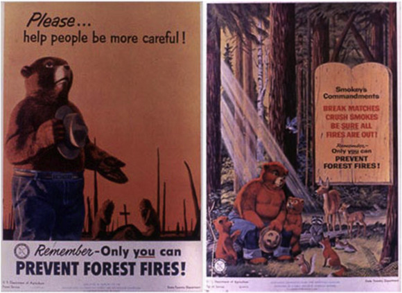 Smokey Bear and the pyropolitics of United States forest governance