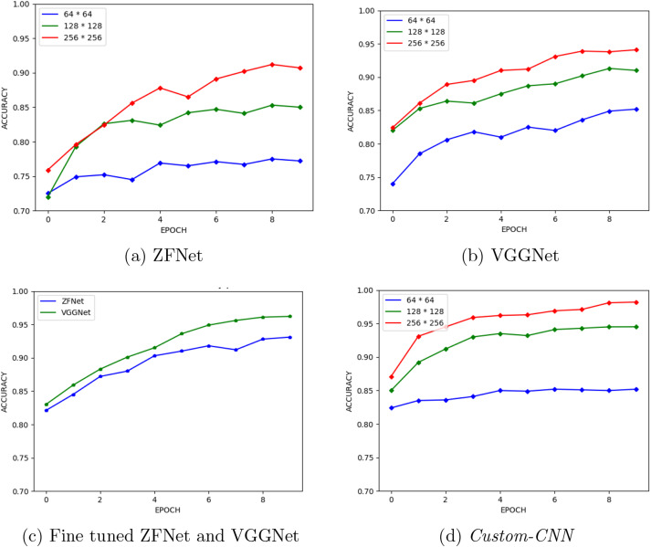 Visual inspection and characterization of external corrosion
