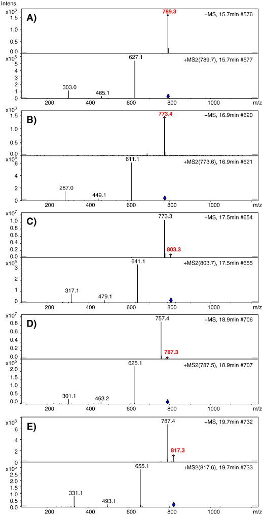 phenolic composition of the berry parts of hybrid grape cultivar brs