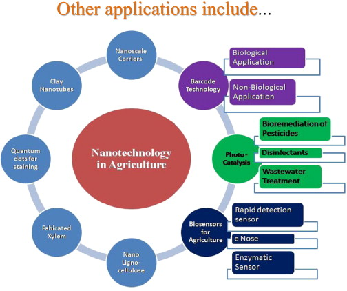 Nanotechnology in agro-food: From field to plate - ScienceDirect