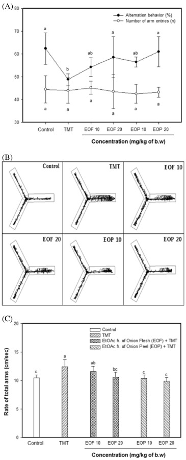 Ameliorating Effects Of Ethyl Acetate Fraction From Onion Allium