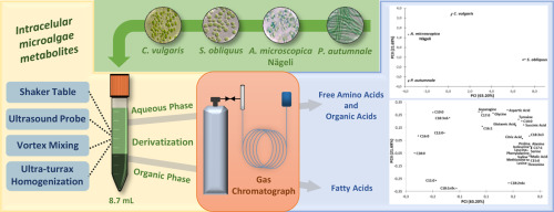 Polar And Non Polar Intracellular Compounds From Microalgae Methods Of Simultaneous Extraction Gas Chromatography Determination And Comparative Analysis Sciencedirect
