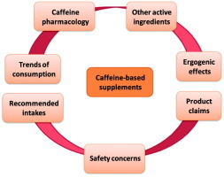 Caffeine-based food supplements and beverages: Trends of