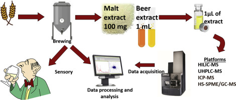 Influence of malt source on beer chemistry, flavor, and flavor