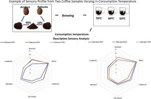 Impact Of Consumption Temperature On Sensory Properties Of Hot Brewed Coffee Sciencedirect