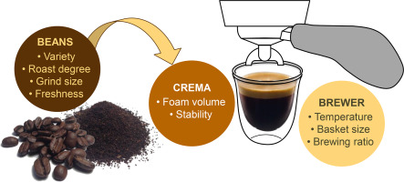 Investigation Of The Factors That Affect The Volume And Stability Of Espresso Crema Sciencedirect