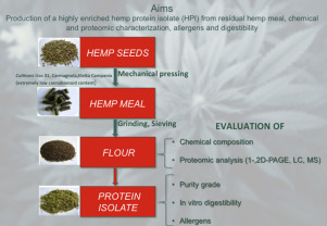 Production, digestibility and allergenicity of hemp