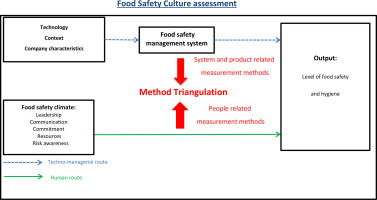 Method triangulation to assess different aspects of food