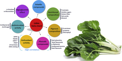 Wild Edible Swiss Chard Leaves Beta Vulgaris L Var Cicla Nutritional Phytochemical Composition And Biological Activities Sciencedirect