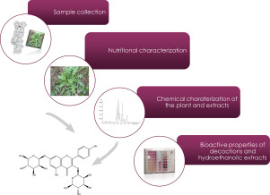 Chemical composition and bioactive properties of the wild
