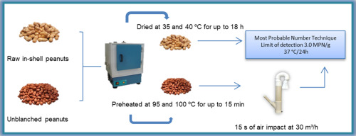 Effects Of Peanut Drying And Blanching On Salmonella Spp
