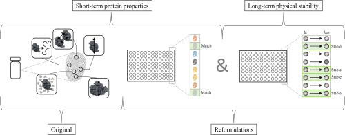 Redesigning food protein formulations with empirical phase diagrams