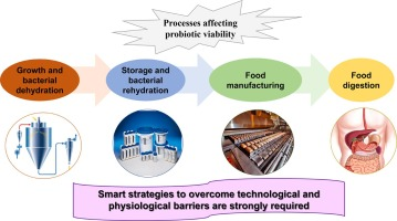 Technological Strategies Ensuring The Safe Arrival Of